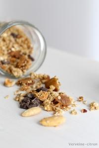 Granola amande noisette figue chocolat